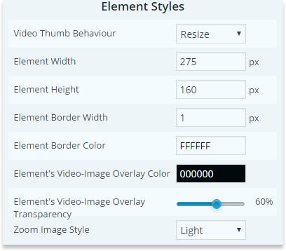 wp-video-gallery-general-options-popup-element-styles